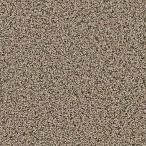 Yellowstone Hayden Valley Carpeting by TAS Flooring