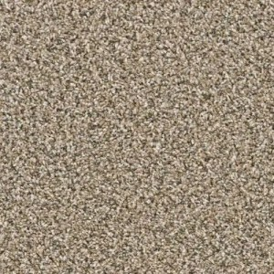 Yellowstone Teton Carpeting by TAS Flooring