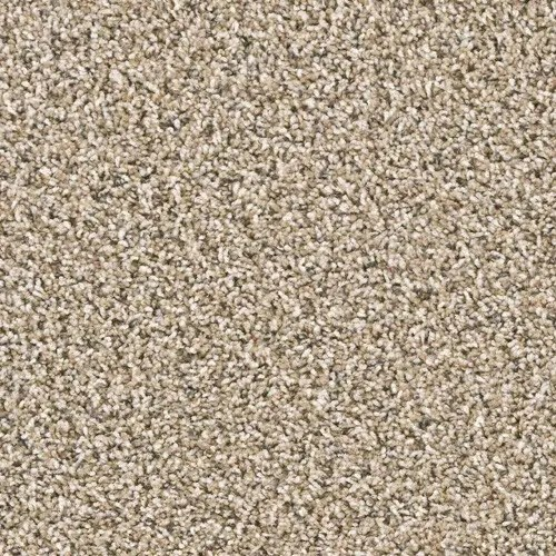 Yellowstone Washburn Carpeting by TAS Flooring