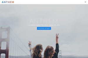 ANTHEM Divi Child Theme