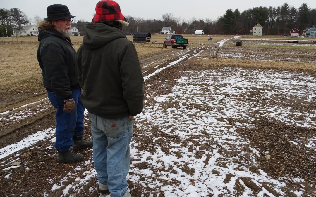 A visit to Simple Gifts Farm