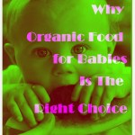 Do You Know Why Organic Food for Babies – Is The Right Choice