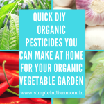 Quick DIY Organic Pesticides You Can Make At Home For Your Organic Vegetable Garden