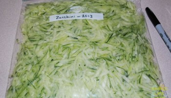 How to Freeze Zucchini - Part 1