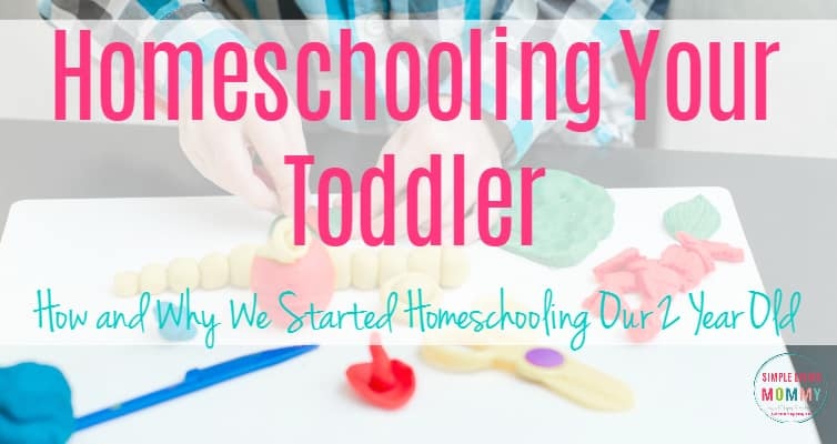 Homeschooling Your Toddler with Products from Dollar Tree