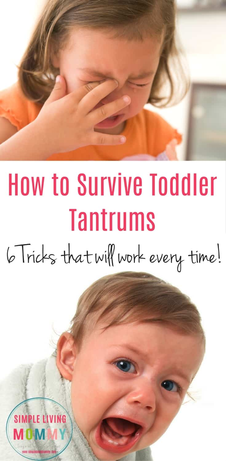 If you're the parent of a toddler, you know that tantrums can strike at any time. Here are 6 can't miss tips to try the next time your toddler has a meltdown! My favorite is #5!