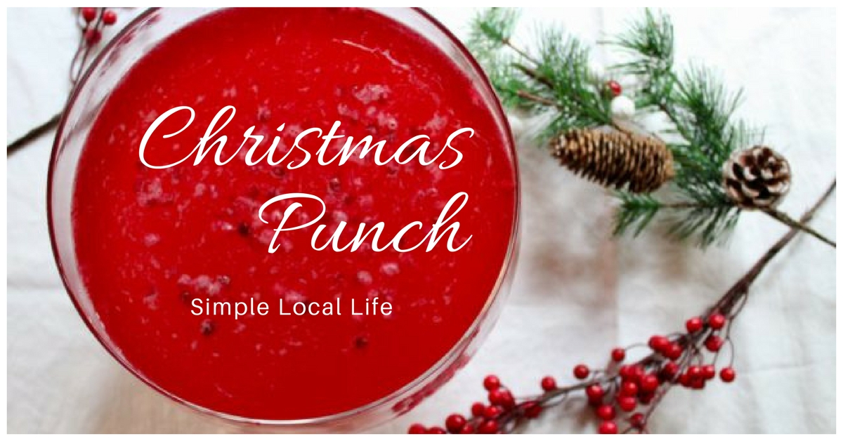 Pretty Drink for Your Holiday Party- Christmas Punch