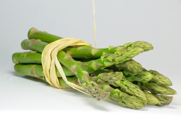 asparagus-700124_640