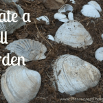 Create A Seashell Garden