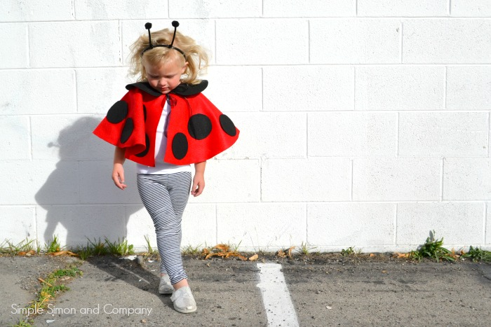 Lady Bug Cape Costume