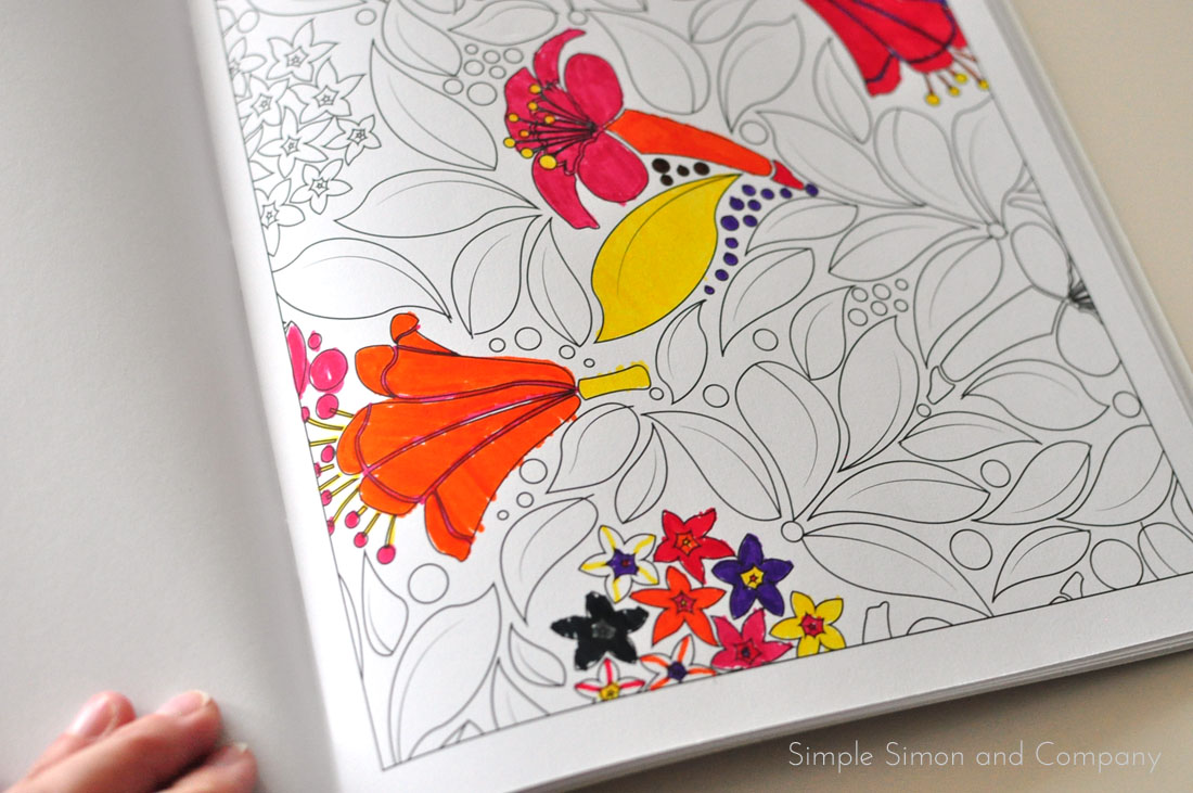 Playful Designs Coloring Book Review