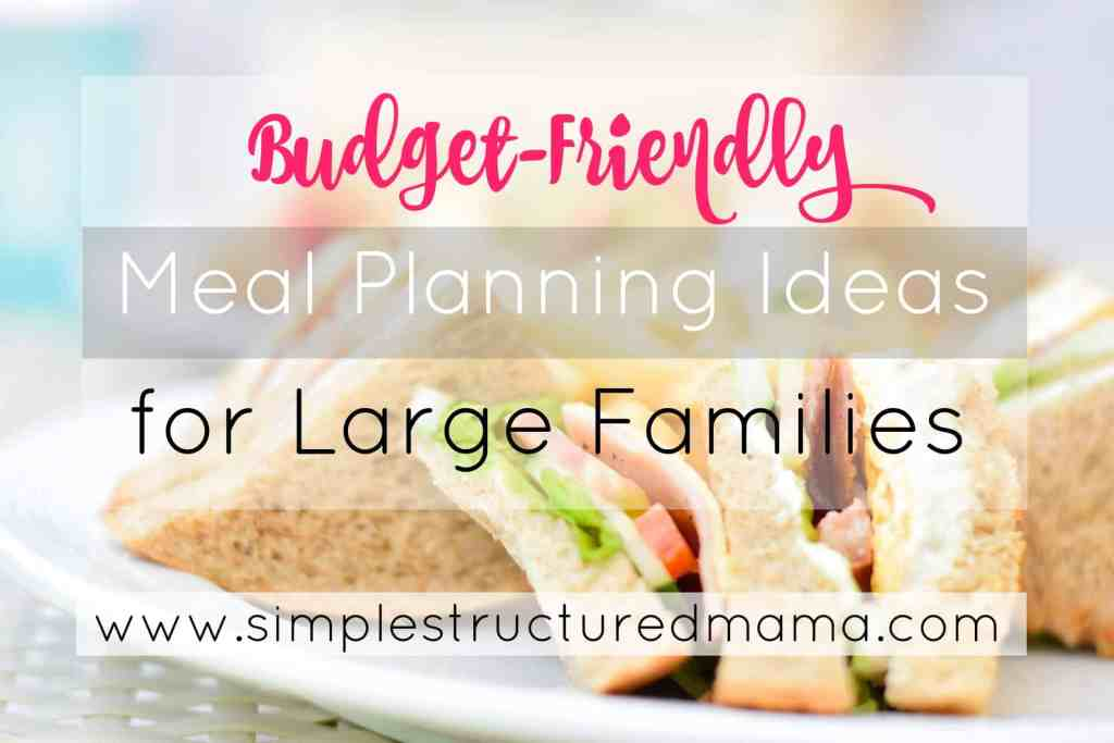 Budget-Friendly Meal Planning Tips for Large Families