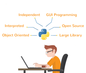 What Can You Do With Python