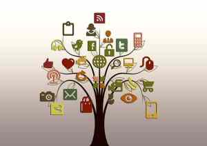 pixabay social media