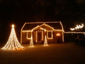 Year 1. 10,000 Lights