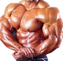 picture of muscular steroid user