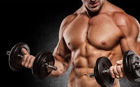 1 Info Source for Anabolic Steroids Online (Advanced Reports
