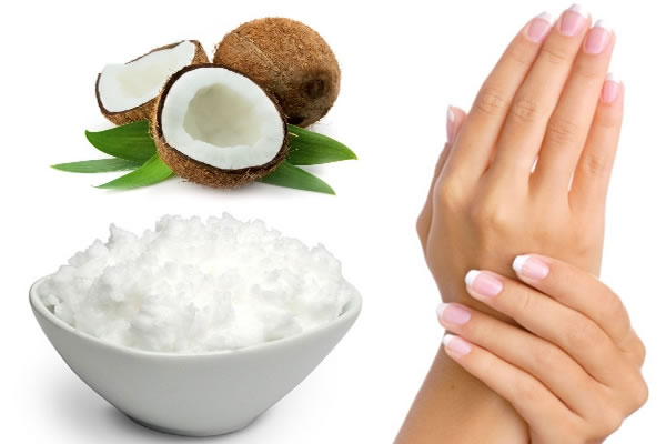 The Virgin Coconut Oil Suppliers
