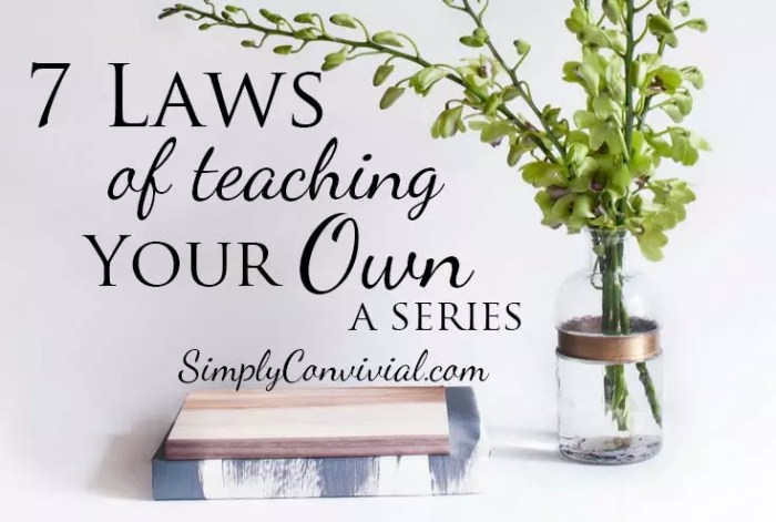 Seven Laws of Teaching your Own Series