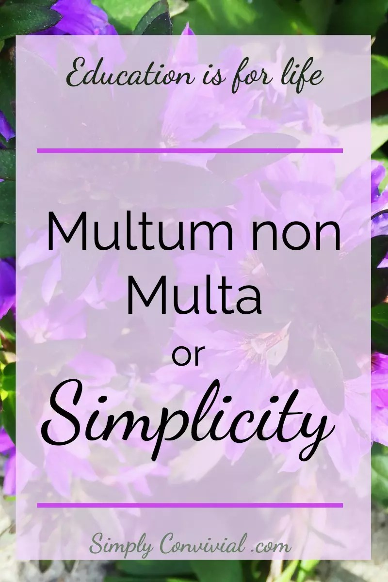 Multum Non Multa is a motto not only for classical education, but also for normal life. Apply simplicity to our homes, schedules, and our lives as mothers.