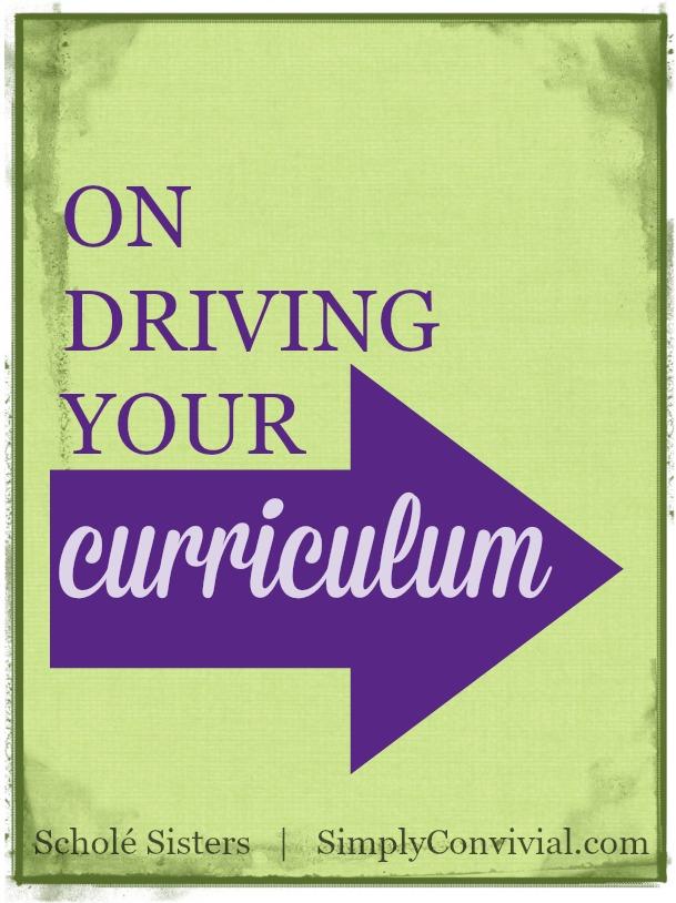 driving-curriculum