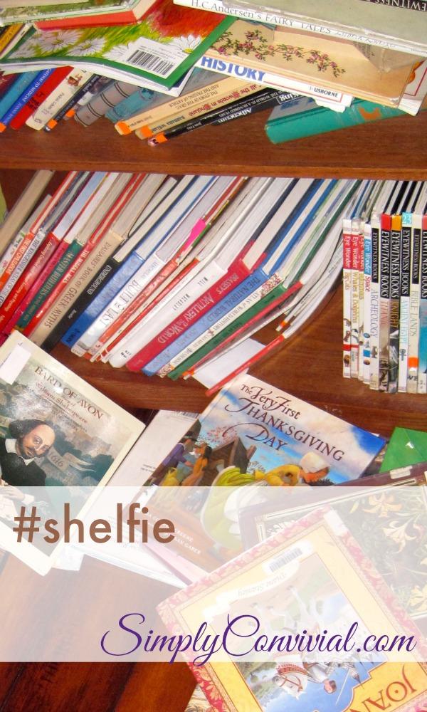 shelfie72614