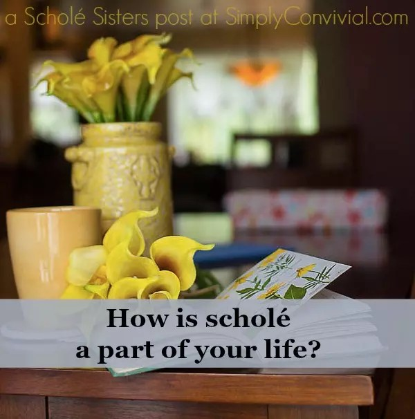 schole-life