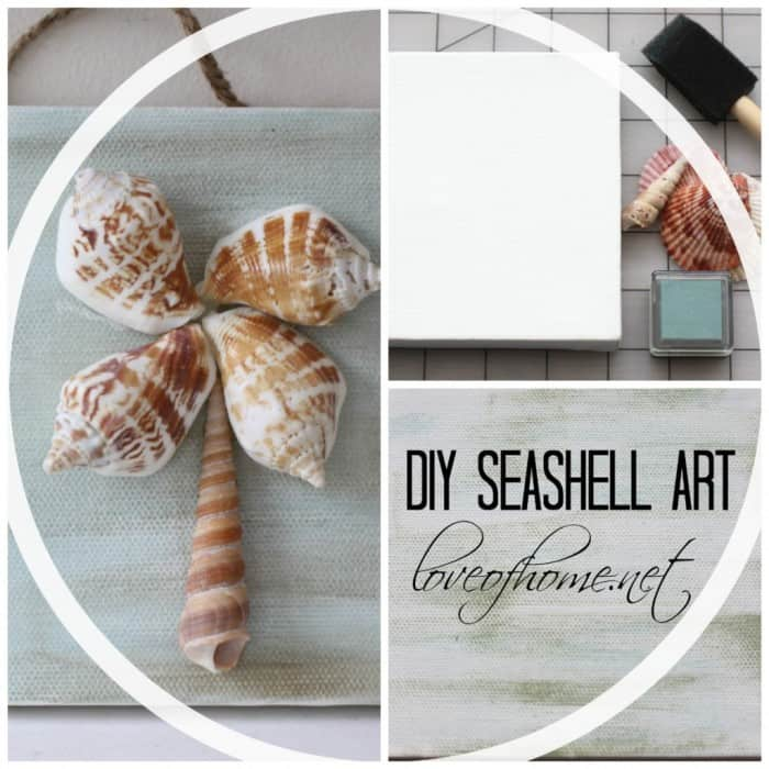 sea shell art