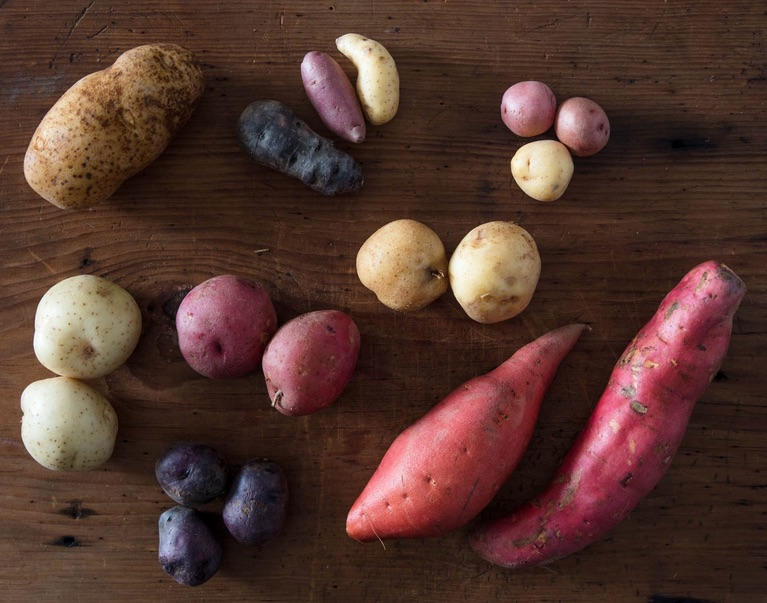 Several varieties of sweet potato
