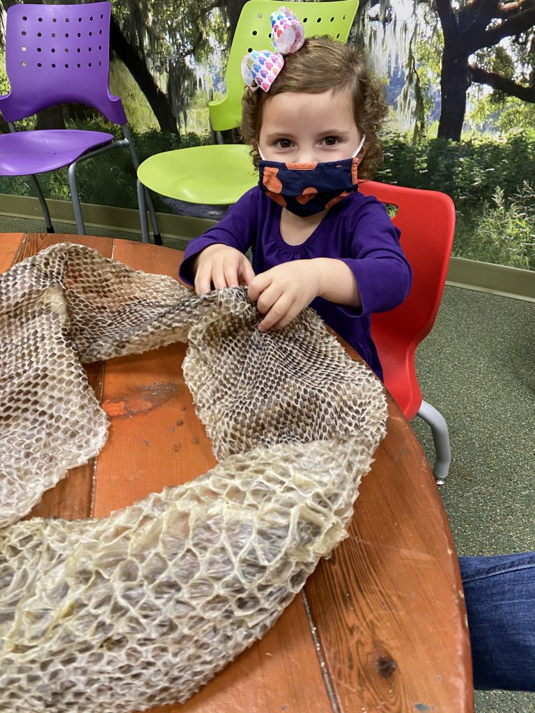 Caroline at the Florida Aquarium sitting at a table touching a snake skin