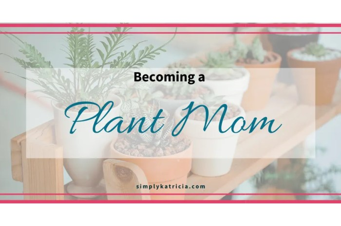 I'm So Excited to Become a Plant Mom