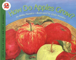 How Do Apples Grow and other great books for teaching about apples!