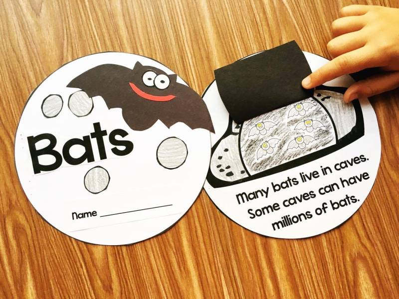 Bats Kindergarten Interactive Story loaded with facts about bats and activities to reinforce the skills.