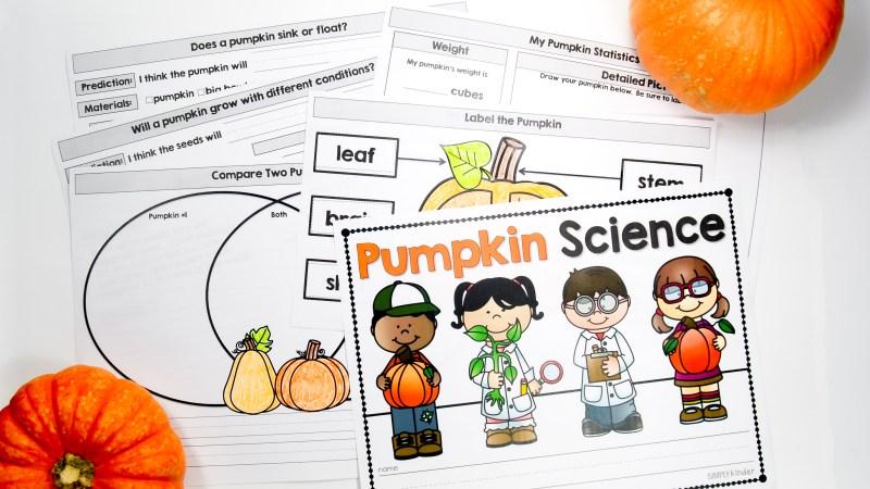 Pumpkin Science Activities perfect for kindergarten, first grade, and even preschool.