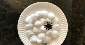 Paper Plate Spider Web Craft for Kids