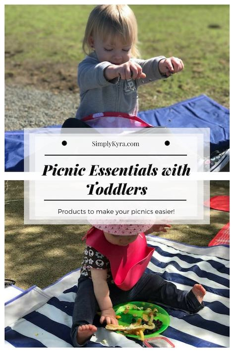 Picnic Essentials with Toddlers