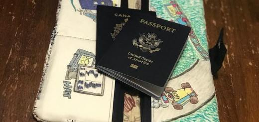 Labelled Family Passport Holder