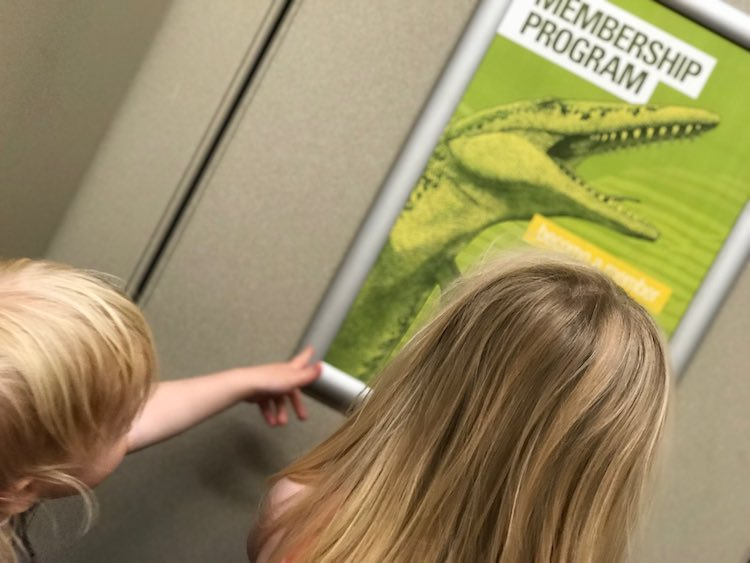 With toddlers even the bathroom can be exciting as there's a swimming dinosaur on the memmbership ad on the back of the door.