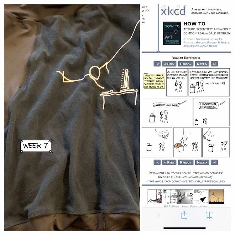 Vertically split image for week 7. Left side shows a closeup of the black boxers showing the image of a person swinging on a rope about to type on the computer. The right side of the image shows the cartoon in question (linked below the image) XKCD number 208.