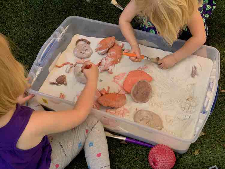 A bin of sand with salt dough fossils all throughout. Ada and Zoey are leaned over the sides using paintbrushes to excavate them.