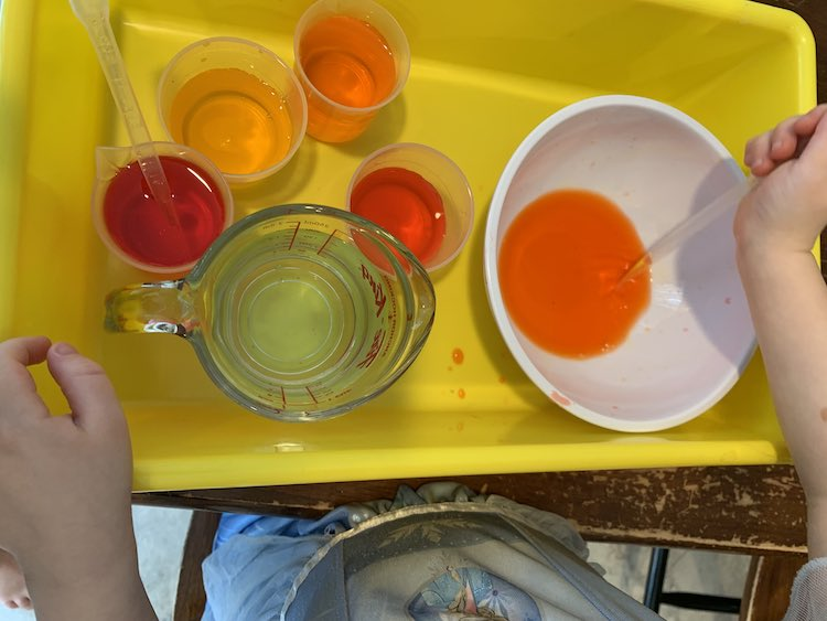 Over view of the yellow sensory bin holding the, previously, empty white bowl, clear water, and four cups of food dye. Zoey is currently squeezing dye into the white bowl making a pool of orange at the bottom.