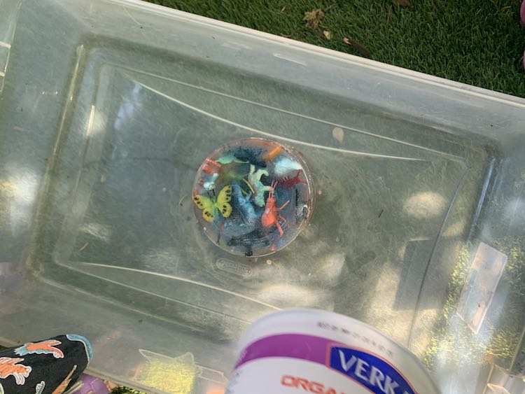 The bottom of the photo shows the upside down container and a part of Ada's skirt. The bin takes up most of the photo with the upside down ice centered inside.