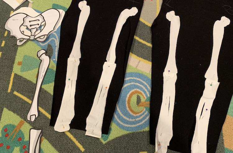 Image shows both pant legs with the upper and lower leg bones pinned on. To the left is the unused pelvic bone and the paper patterns for the leg bones.