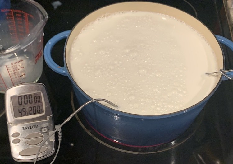 Image shows my Dutch oven filled with milk sitting on a red burner. Beside it sits an instant read thermometer showing a temperature of 49°F and the thermometer portion is sitting in the milk with a cord connecting the two. On the right side you can see the metal handle of my whisk leaned against the edge so it doesn't fall in.