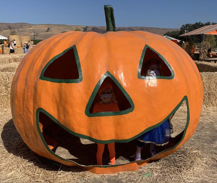 Image shows a metal jack-o-lantern with the girls standing inside of it. Ada is looking out of the one eye while Zoey looks out of the nose. You can see both of their legs through it's open smiling mouth.