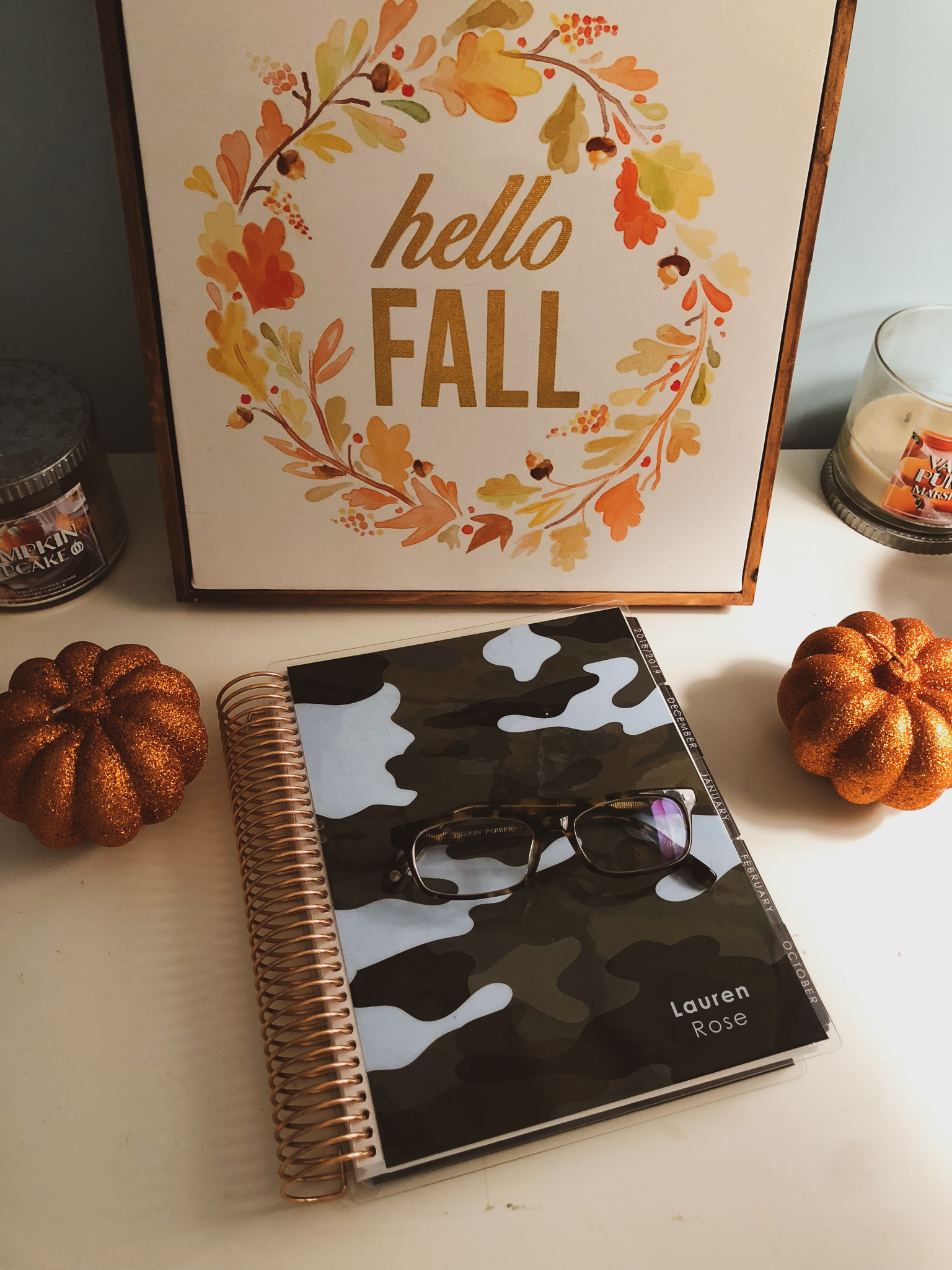 Plan With Me October 2018!