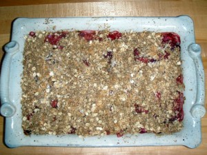GUILT FREE Strawberry/ Rhubarb Crumble