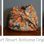 Newborn Diapers: Smart Bottoms Born Smart