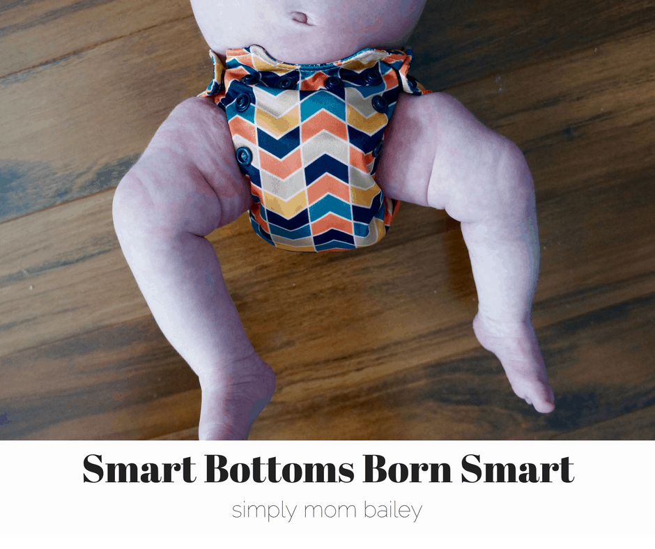 smart bottoms born smart front view 10lbs