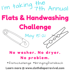 I'm taking the 7th Annual Flats and Hand Washing Challenge